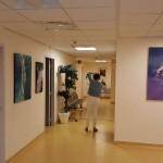 Clinique Esquirol 1